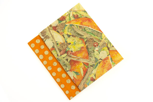Notebook Set: Orange Polka Dot & Floral paperback journal 50% OFF SALE