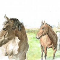 Horse Woody & Miggs- A5 card artwork by Ally Tate