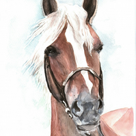 Horse - Ester - A5 card artwork by Ally Tate
