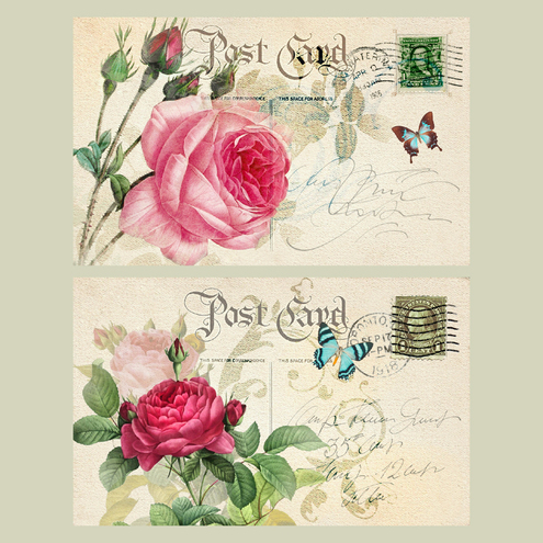NOTECARDS ROSE POSTCARDS