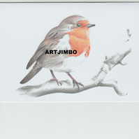 Robin red breast handmade pencil print blank greeting card