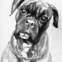 Original artwork Boxer Dog