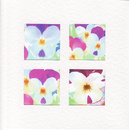 SALE - Viola Flower Images  -  Greetings Card or Notelet - Floral Photo Prints