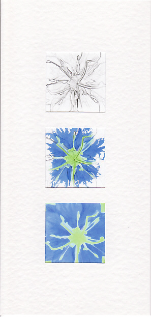 SALE - Blue Fennel Flower Images  - Greetings Card  - Floral Photo Prints