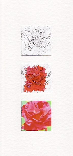 SALE -Pink and Red Rose Images - Greetings Card or Notelet - Floral Photo Prints