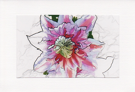 SALE - Clematis Flower Image 2 - Greetings Card or Notelet - Floral Photo Print