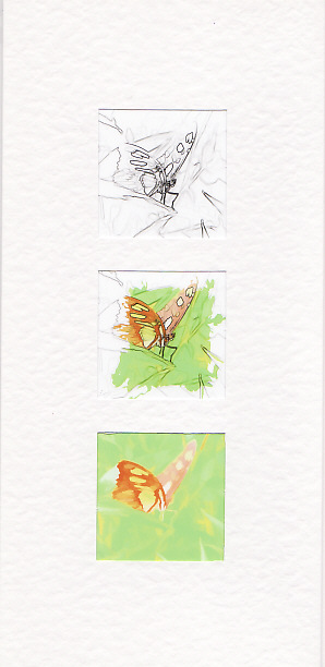 SALE - Perched Butterfly Images -Greetings Card or Notelet -  Photo Prints