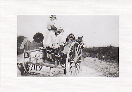 SALE - Lady, Children,Horse & Cart Image - Greetings Card - Old Photo Print