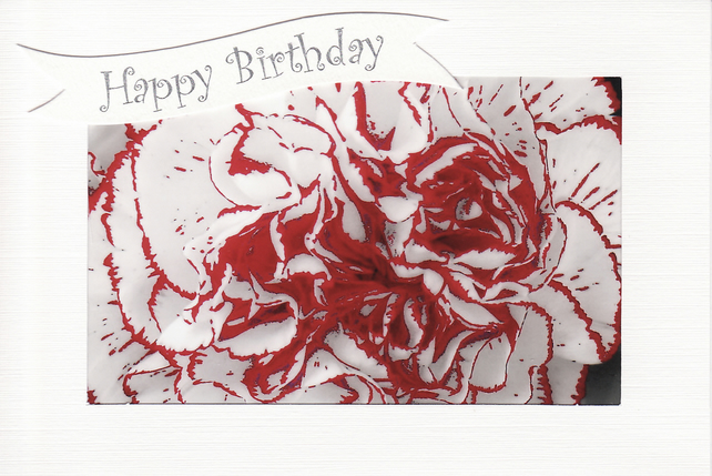 SALE - Red & White Carnation Image - Happy Birthday Card - Photo Print