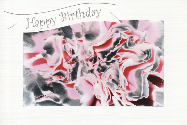 SALE - Pink & Grey Carnation Image - Happy Birthday Card - Photo Print