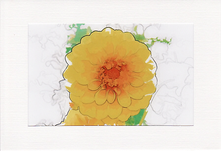 SALE -  Yellow Dahlia Image - Greetings Card Or Notelet  -  Floral Photo Print