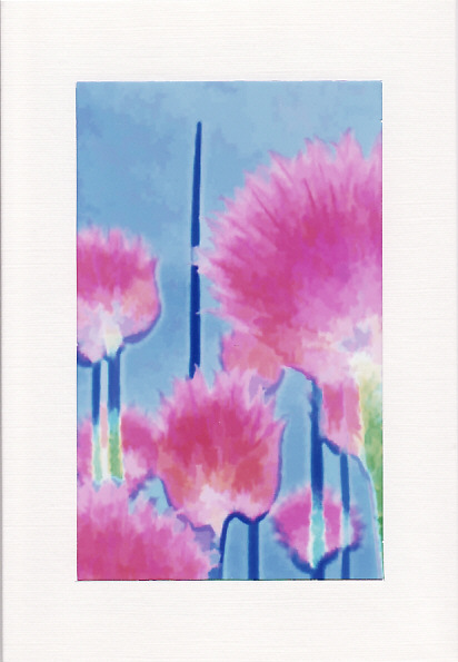 SALE - BRIGHT CHIVES Image 2 - Greetings Card Or Notelet - Floral Photo Print