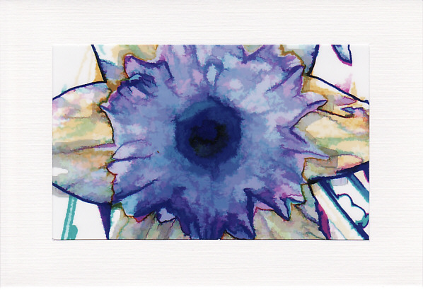 SALE - BRIGHT DAFODIL Image - Greetings Card Or Notelet - Floral Photo Print