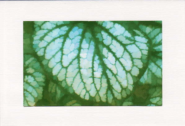 SALE - Bright Green Leaves Image - Greetings Card Or Notelet - Photo Print