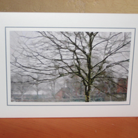 CLEARANCE------Christmas Card - Sketch Effect Trees - Snow Scene