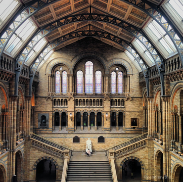 Natural History Museum Photo