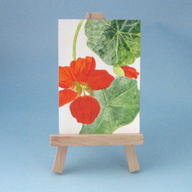 Sale Price. Nasturtium Flower ACEO Painting