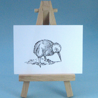 Baby Kiwi Drawing Collectable Art
