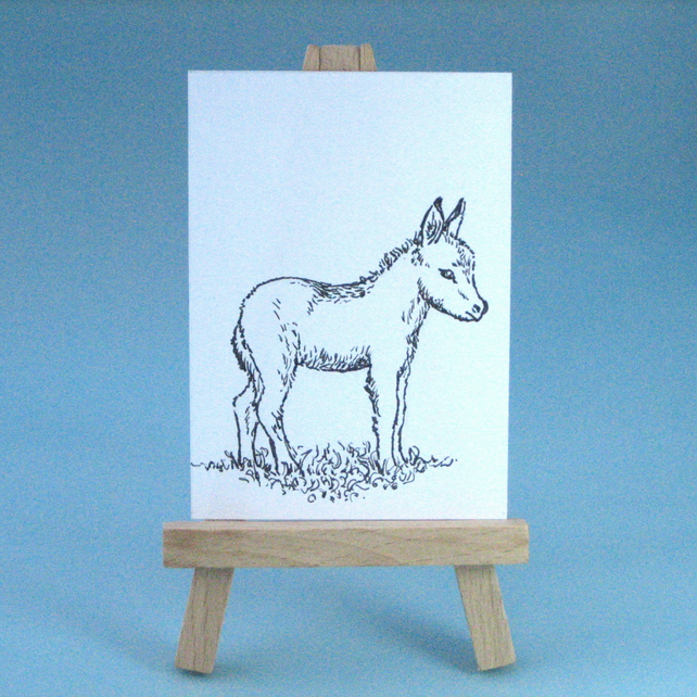 Baby Donkey Drawing