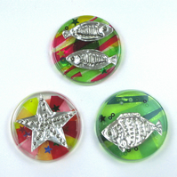 Fun Fish Fridge Magnets, Set of Three