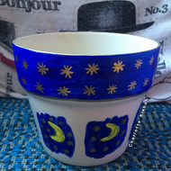 Hand drawn and hand painted moon and stars design plant pot home decor astronomy