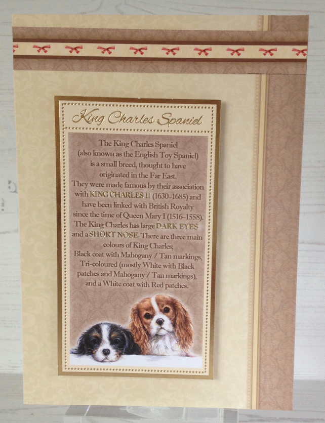 King Charles Spaniel Description Card