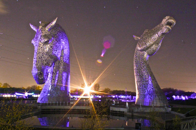 ANDY SCOTT'S KELPIES  (version 8)  blank greeting card