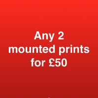 ANY 2 mounted prints for fifty pounds