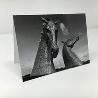 ANDY SCOTT'S KELPIES  (version 1)  blank greeting card