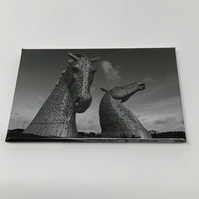Andy Scott's KELPIES fridge magnet