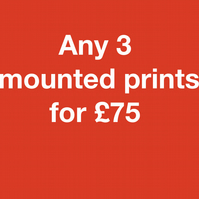 ANY 3 mounted prints for seventy five pounds FREE DELIVERY