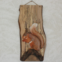Red squirrel panel
