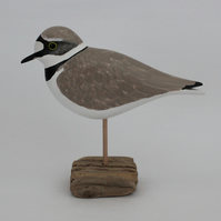 Little ringed plover on driftwood