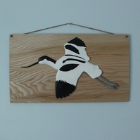 Avocet on ash panel
