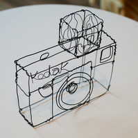 Wire camera sculpture