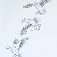 Descending Ducks Sculptural Wire Drawings