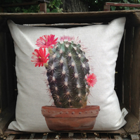 Cactus Echinocereus Cushion with feather insert