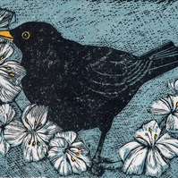 Apple Blossom Blackbird