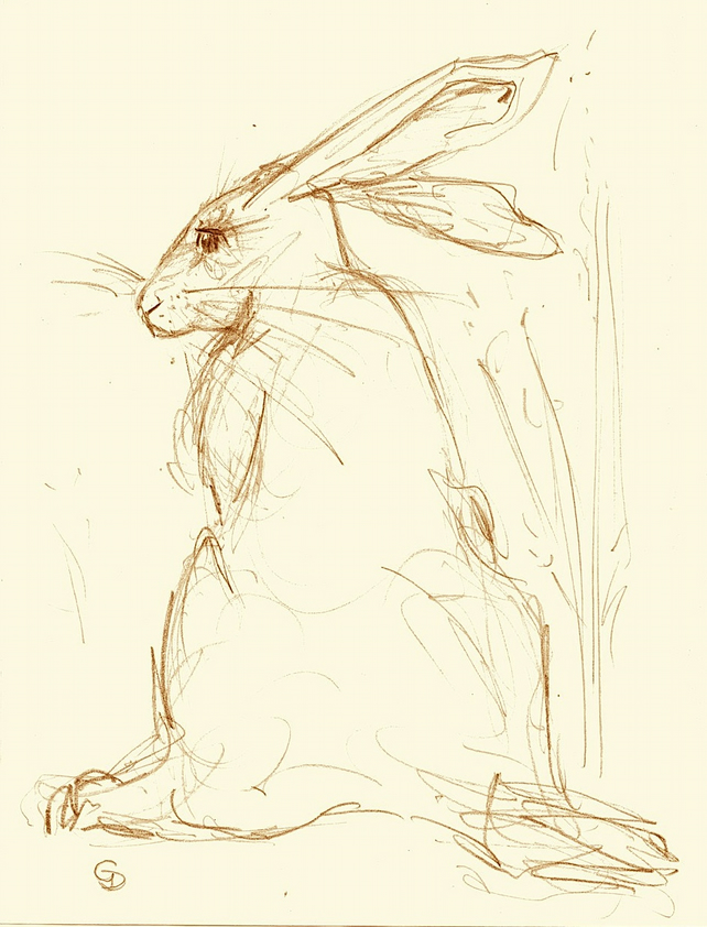 Scribbled Hare greeting card