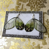 Black and Green Opaque Sparkle Butterfly Wings Sterling Silver Earrings