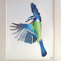 Blue Tit Flapping Original painting