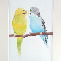 Two Budgies Original Painting