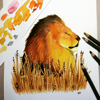 Lion In The Grass Original Painting