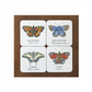 Butterfly Coasters (Set of 4)