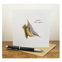Nuthatch - Greeting Card