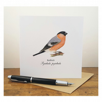Bullfinch - Greeting Card