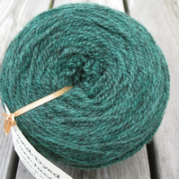 Hand-dyed Pure Jacob Light Aran Wool Fir 100g