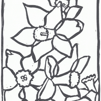 Daffodil Print In Black and whiteA black and white linocut in a very limited edi