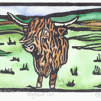 Hand Coloured Highland Cow, Limited Edition, Mounted Print
