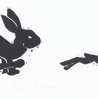 Line of Hares